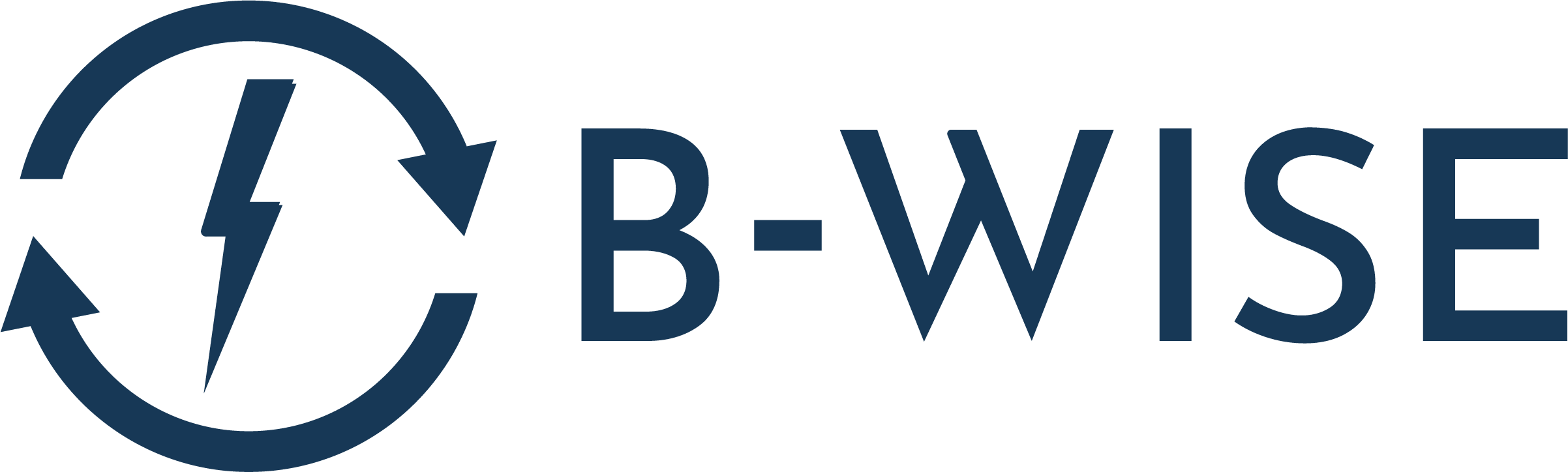 B-WISE